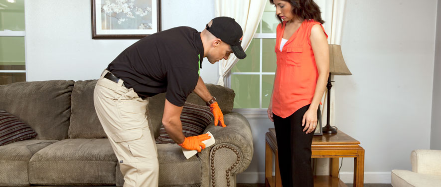 Naperville, IL carpet upholstery cleaning