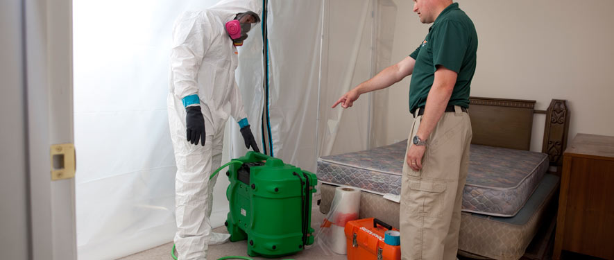 Naperville, IL mold removal process
